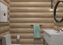 Санузел,баня 010004